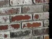 efflorescence, white powdery stains on brick